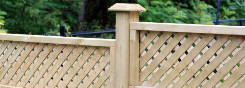 timber fences with trellis